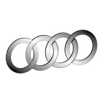 Коврики в салон Audi. Коврики салона Ауди