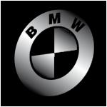 Коврики в багажник BMW. Автоковрики багажника БМВ