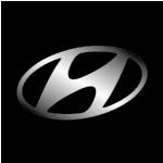 Коврики в багажник Hyundai. Автоковрики багажника Хюндай