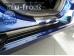Накладки на пороги Fiat Qubo /2008+/. Накладки порогов Фиат Кубо [Alu-Frost]